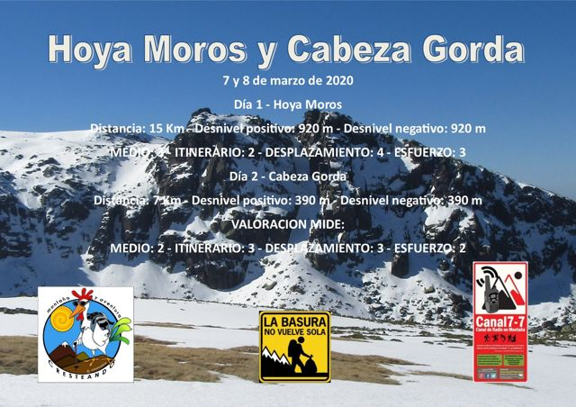 Hoya Moros